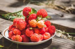 Red sweet strawberries lie on a plate. Close-up stock photography