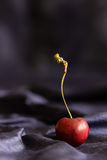 Red sweetheart cherry (grown in England) in the folds of a blue silk background with copy space. Selective focus. Vertical. Royalty Free Stock Images