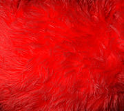 Red synthetic fur. Royalty Free Stock Photo