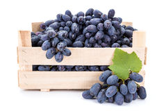 Red table grapes (Vitis) in wooden crate Royalty Free Stock Images