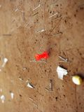 Red Tack and Staples on Bulleting Board Stock Photography