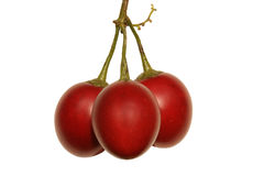 Red Tamarilos Royalty Free Stock Photography