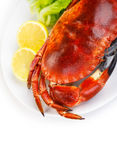 Red tasty boiled crab Royalty Free Stock Image