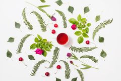 Red tea in a cup, green blades of grass with purple flowers, leaves, birch twigs Royalty Free Stock Image