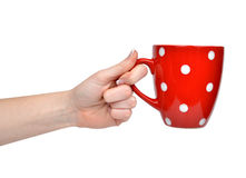Red tea cup in woman hand Stock Photo