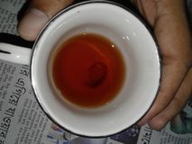 Red tea. Its a tradition of bangladeshi people for hospitality Royalty Free Stock Photos