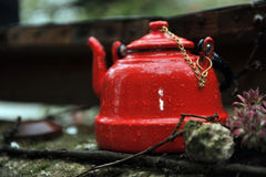 Red Tea Kettle Stock Images