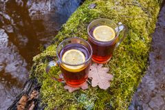 Red tea with lemon in a glass mug on the nature. On a tree with moss over a river royalty free stock photography