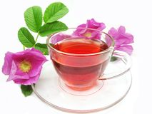 Red tea with wild rose Stock Images
