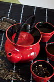 Red Teacup. Japanese-style red teacup set Royalty Free Stock Photography