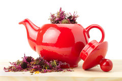 Red teapot with healing herbs Royalty Free Stock Image