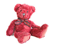 Red teddy Stock Photo