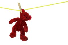 Red teddy bear on clothesline Stock Photos