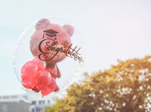 Red teddy bear in transparent balloon with congratulation text for graduate Royalty Free Stock Image