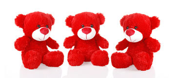 Red teddy bears. On a white background royalty free stock image