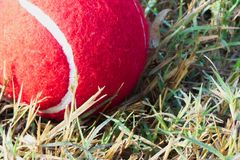 Red tennis ball on dew drops wet green grass track play ground Stock Photo