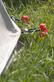 Red tent peg Royalty Free Stock Photo