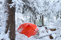 Red tent in winter forest. Tourist camp in snowy . in the snow in Royalty Free Stock Photos