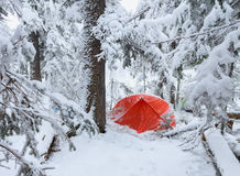 Red tent in winter forest. Tourist camp in snowy . in the snow in Royalty Free Stock Photography