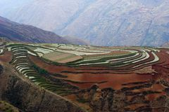 The red terrace of Yunnan, China Stock Photography
