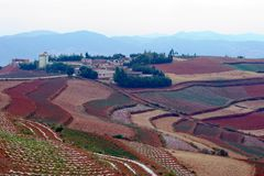 The red terrace of Yunnan, China Stock Photo