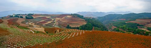 The red terrace of Yunnan, China Stock Image
