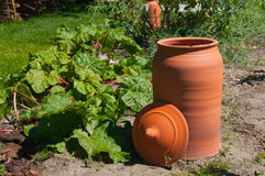 Red terracota pot in garden Royalty Free Stock Photography
