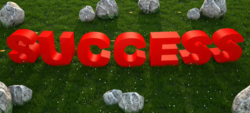 Red text success on green grass Royalty Free Stock Image