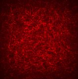 Red Texture Background  for you design Royalty Free Stock Image