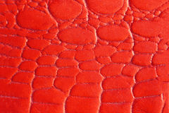 Red texture leather skin. Close up Red texture leather skin Stock Images