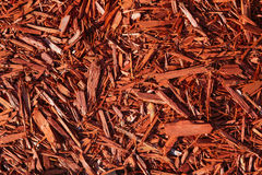 Red texture of wood chips Royalty Free Stock Image