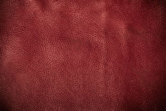 Red textured leather grunge background closeup Stock Images
