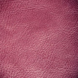 Red textured leather grunge background closeup Stock Photography