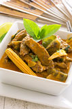 Red Thai Curry with Beef and Vegetables Royalty Free Stock Photography