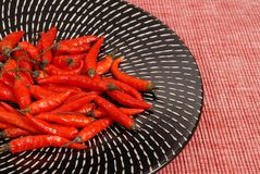 Red Thai peppers on black and white plate. On a red placemat Stock Photos