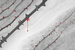 Red thorns color drop Royalty Free Stock Photos