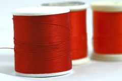 Red thread. On the white background Stock Images