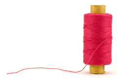 Red thread spool. Isolated on white background Royalty Free Stock Photos