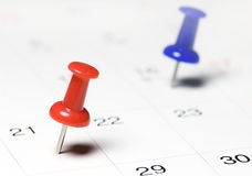 Red Thumb Tack. On Calendar Page Royalty Free Stock Photography