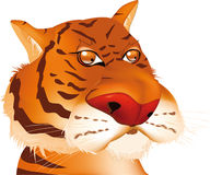 Red tiger from Stock Photography