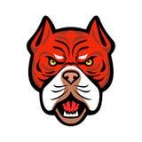 Red Tiger Bulldog Head Front Mascot Royalty Free Stock Photography