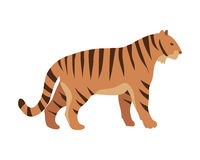 Red Tiger. Cartoon Vector Isolated Mamal Animal Stock Photography