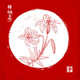 Red tiger lily in white Moon circle on red vintage background Traditional oriental ink painting sumi-e, u-sin, go-hua. Contains hieroglyph - beauty, dreams Stock Images