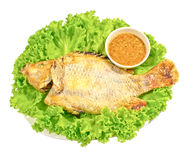Red tilapia apply salt grilled fish and sauceon Royalty Free Stock Photos