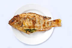 Red tilapia grill Stock Image