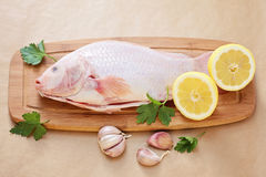 Red tilapia Royalty Free Stock Photography