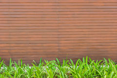 Red tile, brick wall background with green grass Stock Photography
