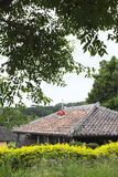 Red tile roof of old private house in Okinawa. A traditional red tile roof house in Okinawa Stock Photo