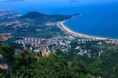 Red-tile roofs shaded in trees among blue sea and clear sky 3. Red-tile roofs shaded in trees are a scenic feature of Qingdao city , China . the city lies on Stock Photography