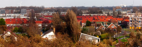 Red tiled Dutch rooftops Royalty Free Stock Images